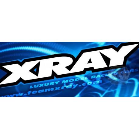 XRAY XB8 - 2019 SPECS - 1/8 LUXURY NITRO OFF-ROAD CAR